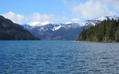 Backgrounder for Comox Lake Water Treatment Options Study