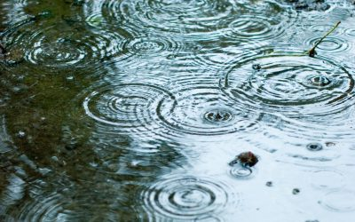 Elevated Risk of Turbidity for Comox Valley Water System Next Week