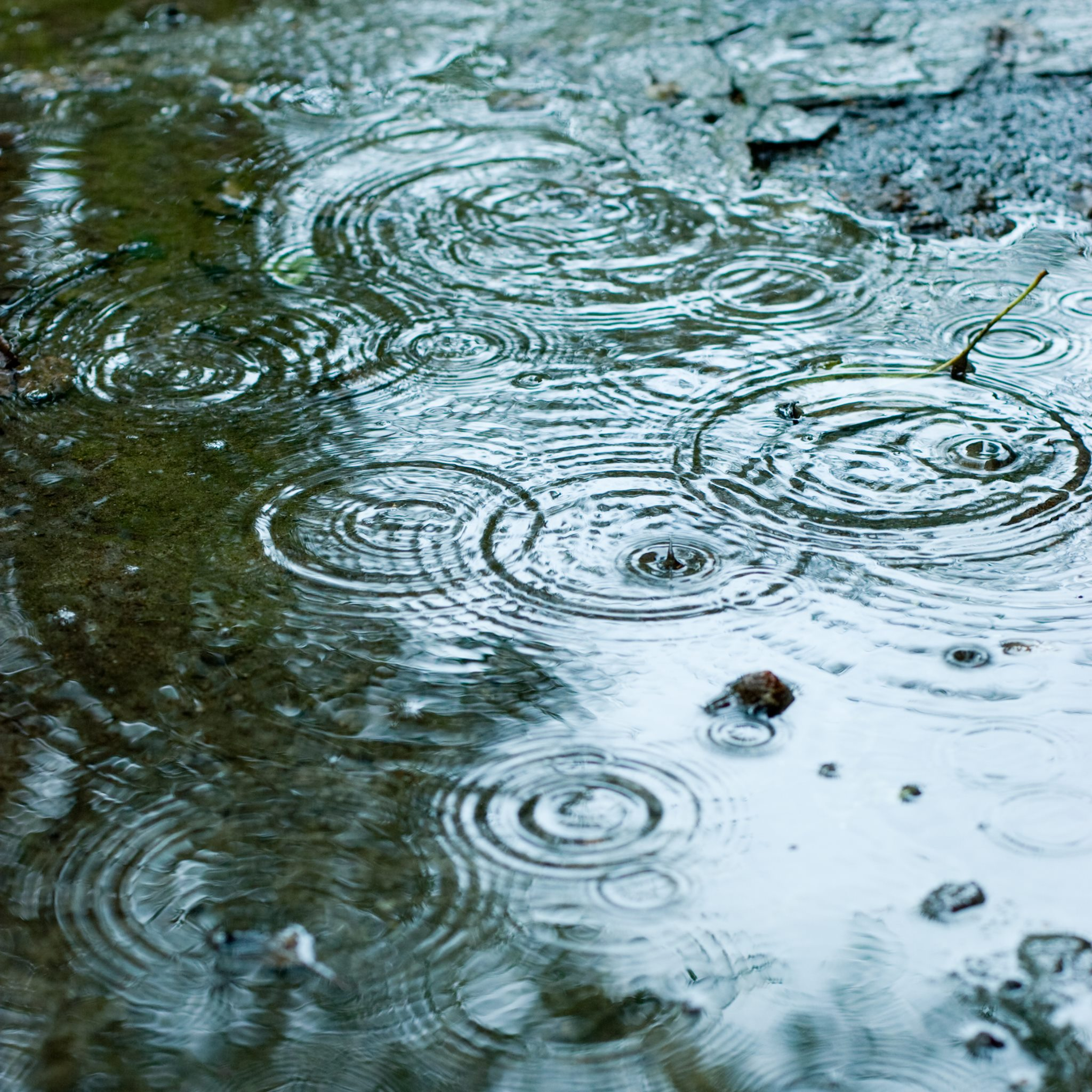 Elevated Risk of Turbidity for Comox Valley Water System