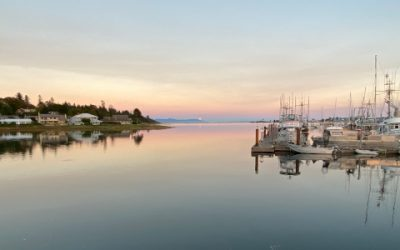 Comox Valley Economic Recovery Task Force Website Updated